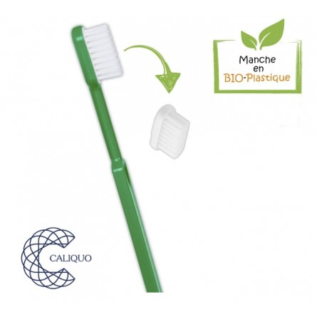 Lot de 2 têtes (recharges) pour Brosse à dents écologique Caliquo